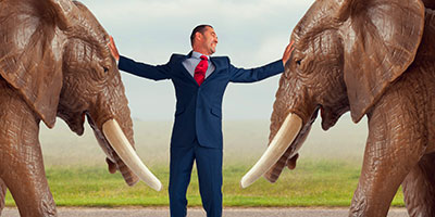 HR exec holding back two bull elephants representing resolving conflict in the workplace